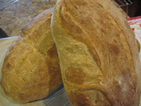 Pain Rustique