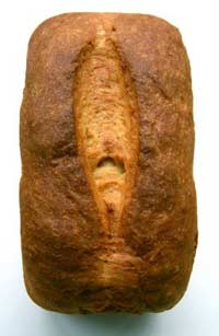 Honey Wheat Ricotta Bread