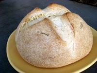 Sourdough Cornmeal Loaf