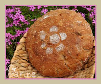 Apricot Bread (80% whole wheat)