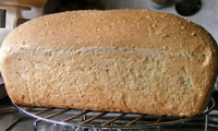 Sourdough Anadama Bread