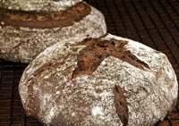 Fig and Fennel Bread with Rye Sourdough