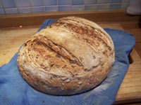 Light Wheat Berry Bread