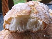 moj kruh