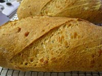 Florentine Pecorino Romano and Rosemary Bread