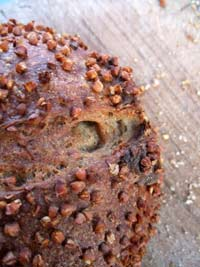 Buckwheat Apple Sourdough
