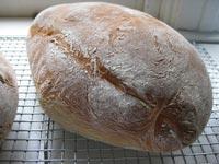 Rustic Potato Loaves
