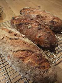 South tyrolean Potato-Nut Bread