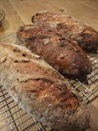 South tyrolean Potato-Nut Bread