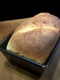 Stuten (a German sweet yeast bread)