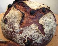 Whole Wheat Sourdough with Orange, Fennel, Raisin
