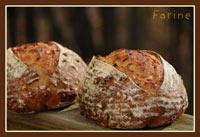 Vermont Apple Bread