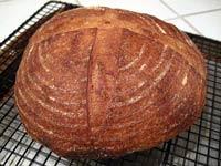 San Francisco Sourdough with some durum flour
