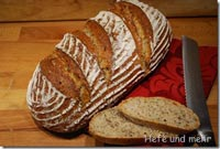 Curdbread with Wheat, Spelt and Millet