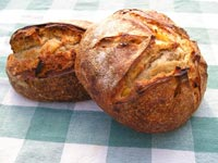 Country French Bread with Apricots and Hazelnuts