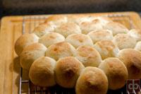 Pull-apart dinner rolls