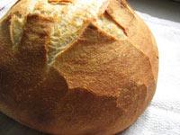 High Gluten Flour Sourdough