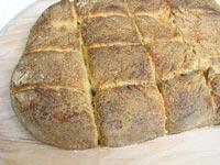 Sourdough rustic no knead rolls